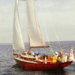 Cheverton Danegeld Class sloop